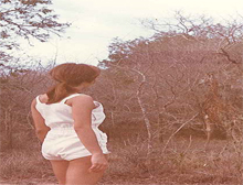Edna Ray at Kruger Game Park: find the giraffe